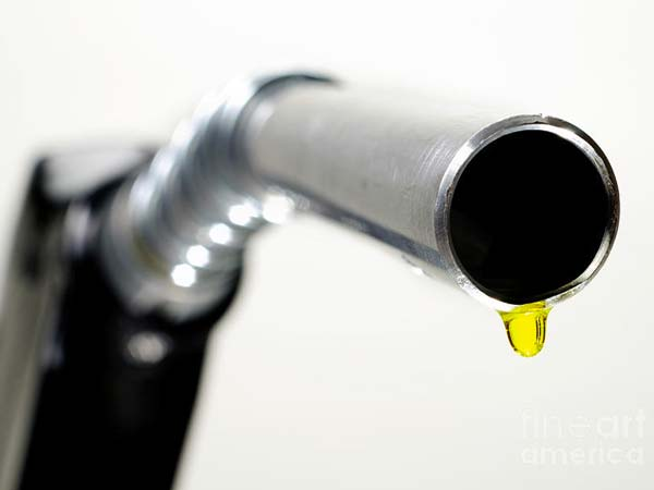 diesel price hiked petrol unchanged