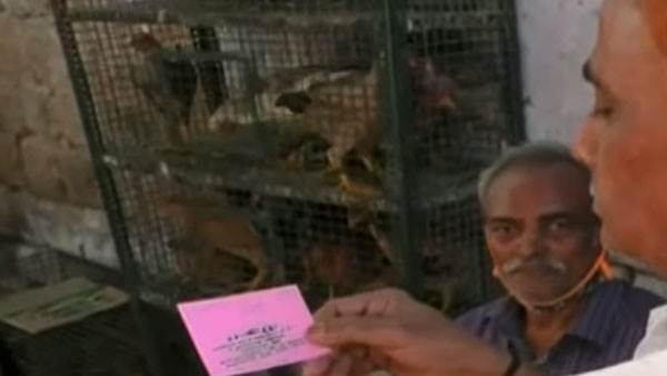 நம்ம தமிழ்நாட்டில்தான்... ஒரு கிலோ இறைச்சி வாங்கினால் ஒரு லிட்டர் பெட்ரோல் இலவசம்... எந்த ஊரில் தெரியுமா?